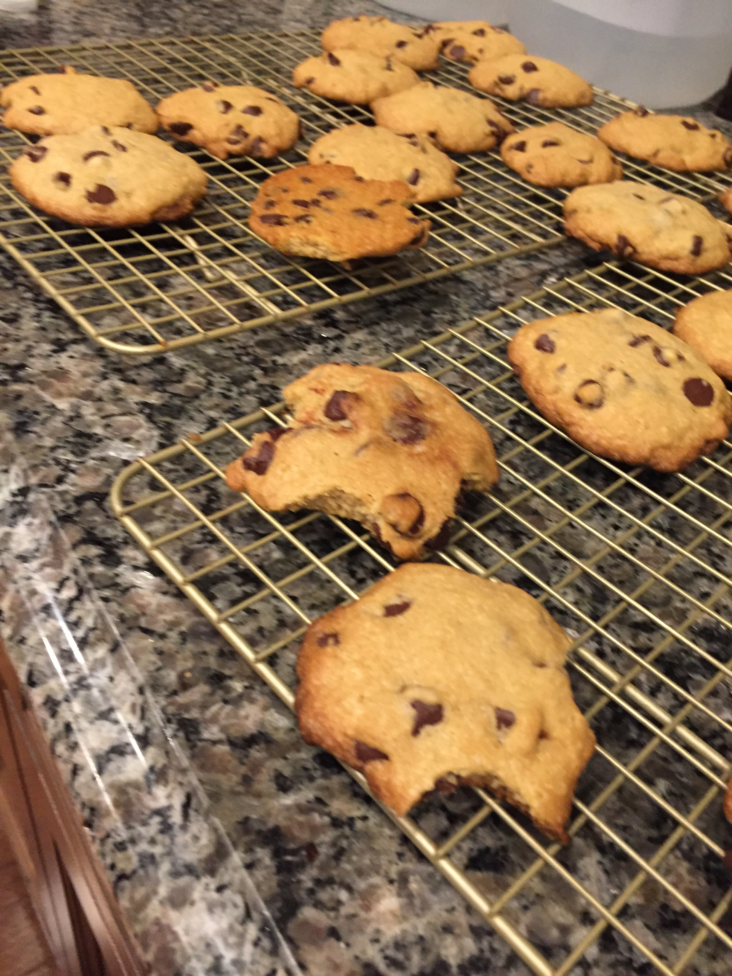 Chewy Chocolate Chip Cookies – Dairyfree, Soyfree – Carson's Cuisine